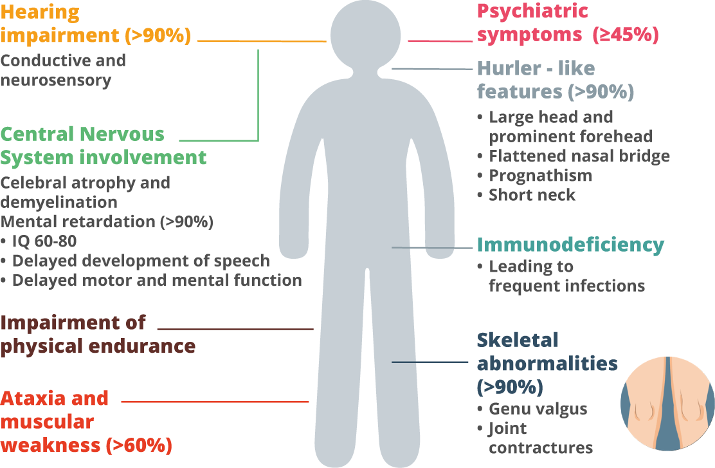 Mental retardation symptoms